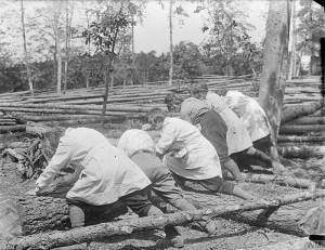 Members of the Women's Land Army Forestry Corps © IWM (Q 30723)